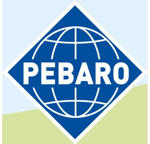 Pebaro Logo since 2019